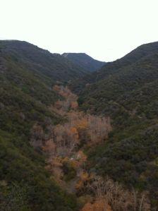 new year's hike...